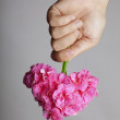 Hand gives a bouquet of flowers in heart shape — 图库照片
