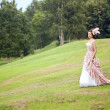 Princess in an vintage dress in nature — Stockfoto