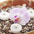 Spa therapy, orchid in the sand — Stock Photo