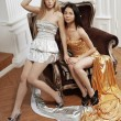 Two luxury fashion woman — 图库照片