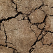 Stock Photo: Earth dried up in drought