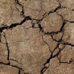 tierra se secó en sequía — Foto de Stock