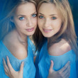 Stockfoto: Twins in the forest