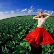 Beautiful girl in a field — Stock Photo #11293375