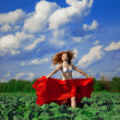 Beautiful girl in a field — Stock Photo #11293393