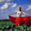 Beautiful girl in a field — Stock Photo #11293394