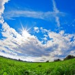 Green field, blue sky and white clouds — Stock Photo #11293787