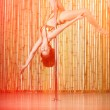 Sexy pole dance woman. — Stock Photo
