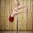 Sexy pole dance woman. — Stock Photo #11294048