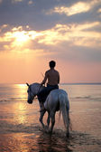 Male riding a horse on the background of the sea — Stock Photo