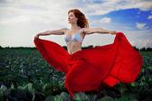 Beautiful girl in a field — Stock Photo