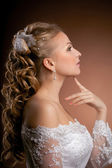 Luxury bride on a bright background — Stock Photo