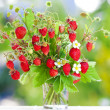 Bouquet of strawberries — Foto de Stock