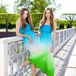 Twins — Stock Photo #11945243