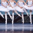 SwLake ballerinas — Stock Photo #10767490