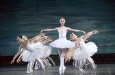 Swan Lake ballerinas — Stock Photo