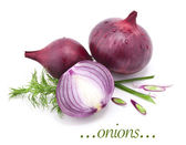 Onions with leaves parsley and dill — Stockfoto