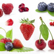 Collection of berry — Stock Photo
