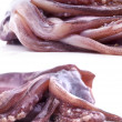 Fresh tentacles of the squid - Stock Photo