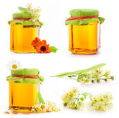 Collection of Honey in glass jar with flowers — Stock Photo