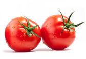 Tomatoes with water drops — Stock Photo