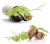 Bottle of wine, cork and leaves of the vine. — Stock Photo