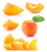 Collection of slice apricots — Stock Photo