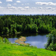 Lake in the spring forest - Stock Photo