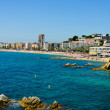 Royalty-Free Stock Photo: View lloret