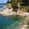 Lagoon lloret - Stock Photo