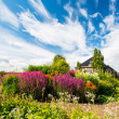Flowerbed sky — Stock Photo