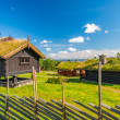 Stock Photo: Grass roof country house