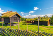 Grass roof country house — Stock Photo