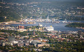 Bird view of Oslo — Stock Photo