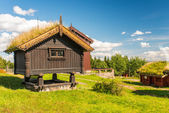 Grass roof house — Stockfoto