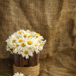 Rustic daisy bouquet in vintage style with background for text — Foto Stock