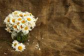 在文字的背景与复古风格质朴雏菊花束 — 图库照片