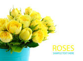 Beautiful bouquet of yellow roses in a blue bucket — Stock Photo