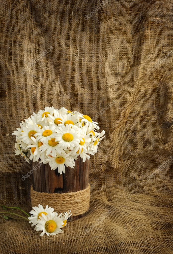Rustic daisy bouquet in vintage style with background for ...