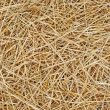 Straw texture background — Stock Photo #11729149