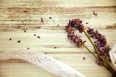 Lavender bouquet — Stock Photo
