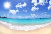 Tropical Caribbean Island Beach on a Beautiful, Sunny Day - Fisheye — Stock Photo