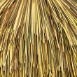 Multi color bamboo cane — Stock Photo
