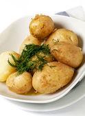 New Potato Boiled closeup — Stock Photo