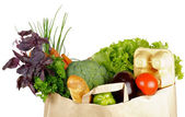 Healthy Eating in Shopping Bag — Stock Photo