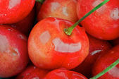 Fresh Cherry background — Stock Photo