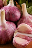 Garlic close up — Stockfoto