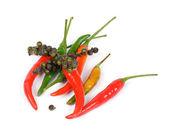 Mini Chili Peppers — Stock fotografie