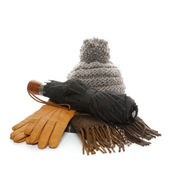 Autumn Accessories — Stock Photo