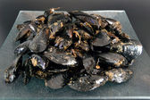 Mussels — Stock Photo